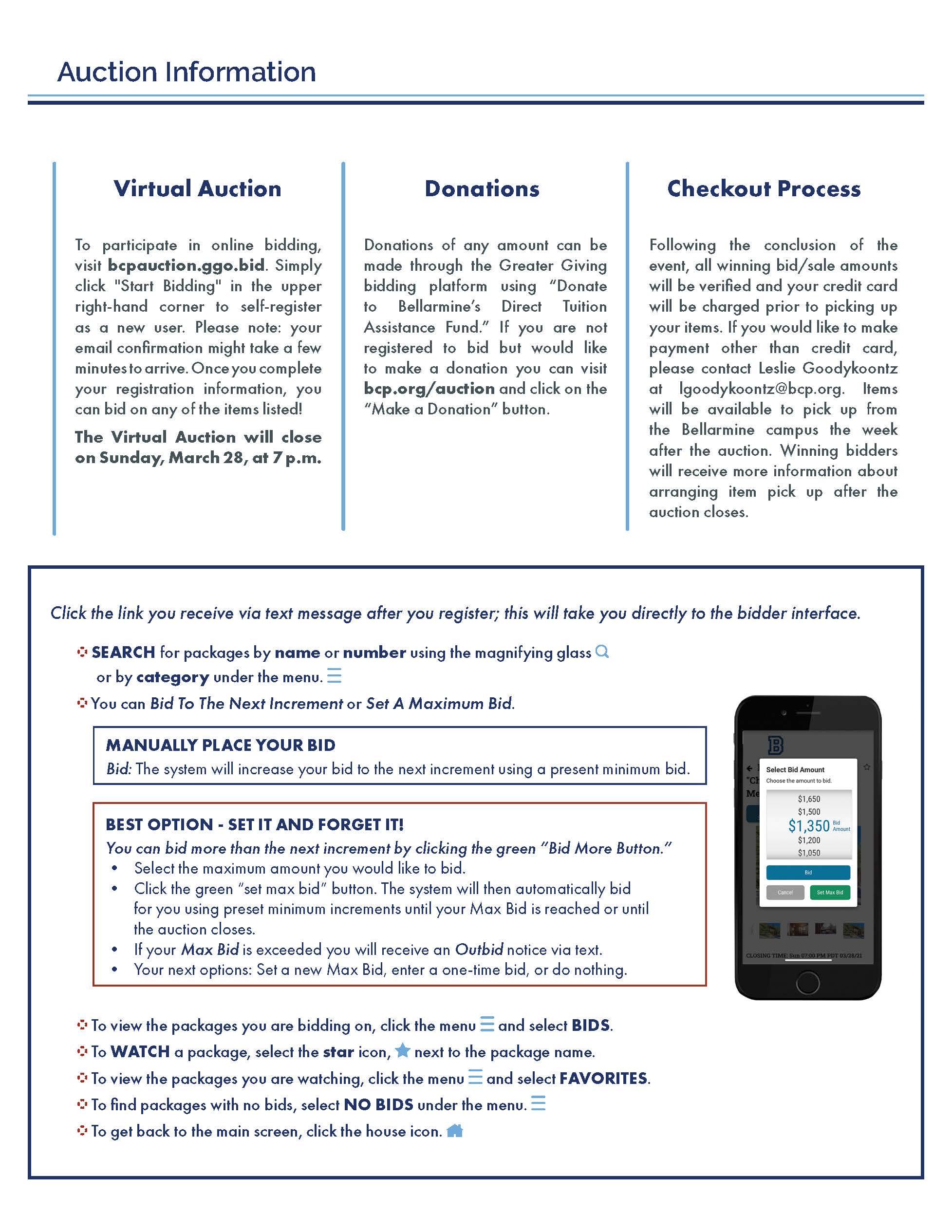 Virtual Auction