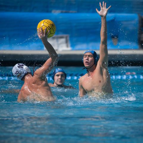 Water Polo 2017